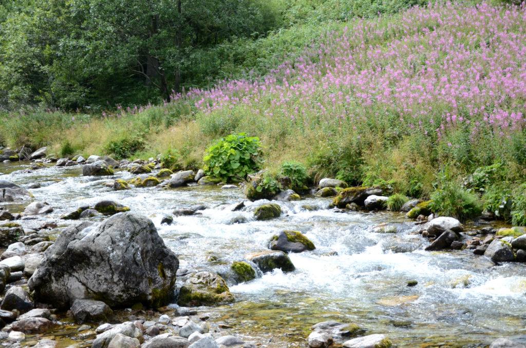 Dolina Kościeliska - Potok Kościeliski