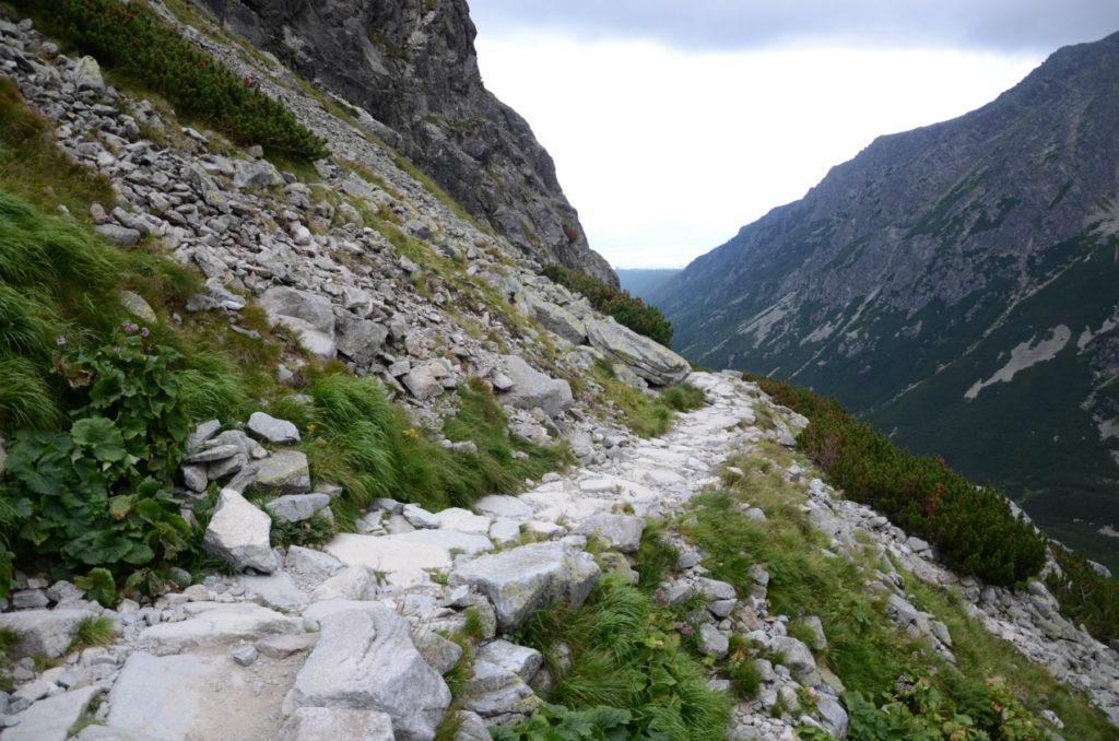 Szlak w kierunku Štrbskiego Plesa