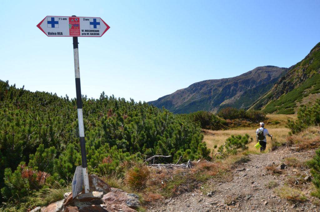 Moldoveanu - Przełęcz Curmatura Pojarnei