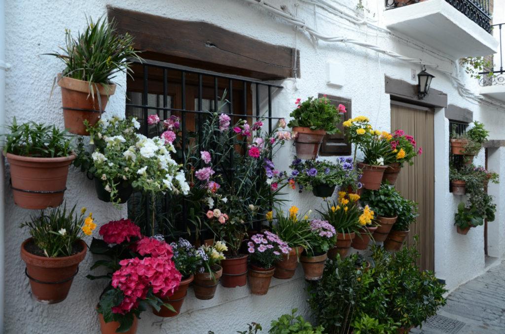 Capileira - kwiaty w oknach
