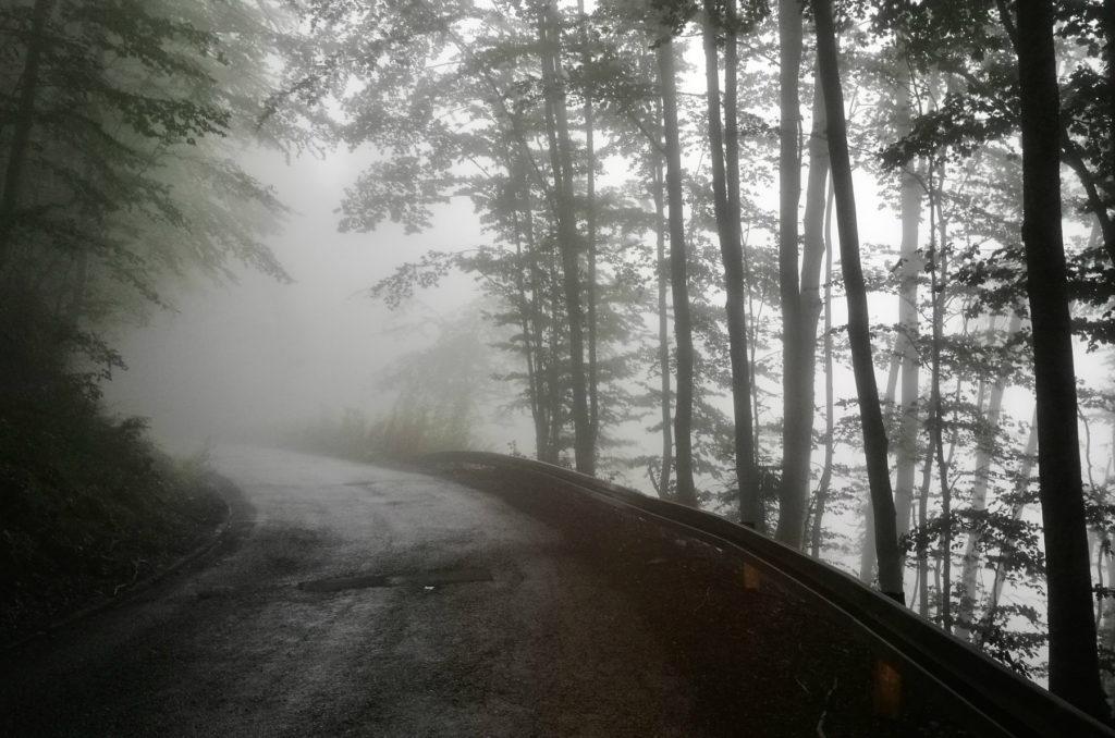 Czarnogóra - droga M19 we mgle