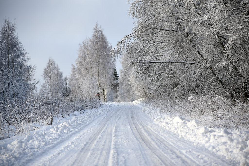 Droga szrutowa w stronę Józefowej Góry