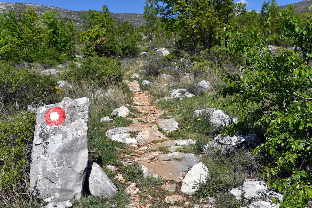 Początek szlaku na Vrh Dinara