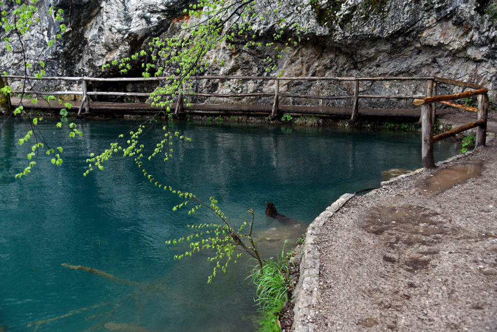 Piltwickie Jeziora - turkusowe wody w jednym z jezior