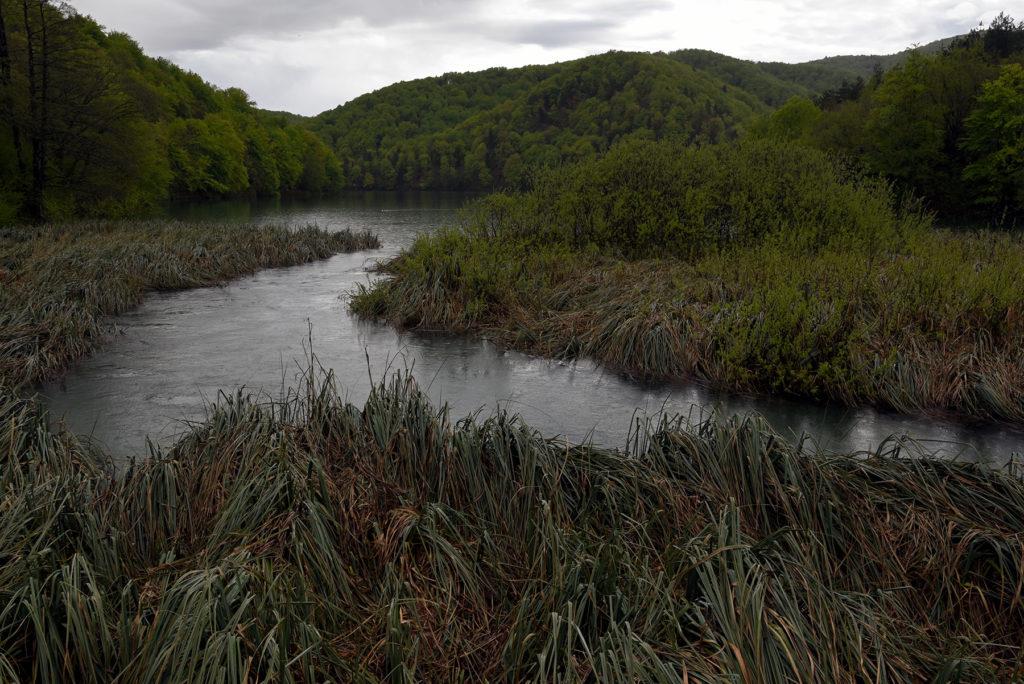 Piltwickie Jeziora - zarośnięte brzegi jeziora Kozjak