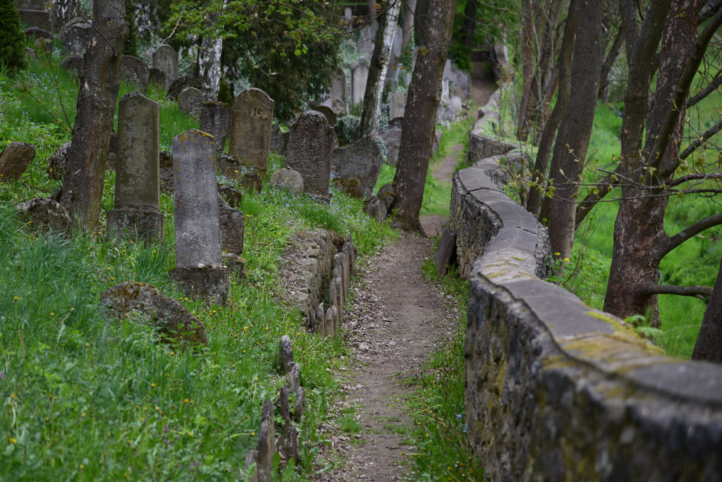 Třebíč - Cmentarz Żydowski - ścieżka przy murze