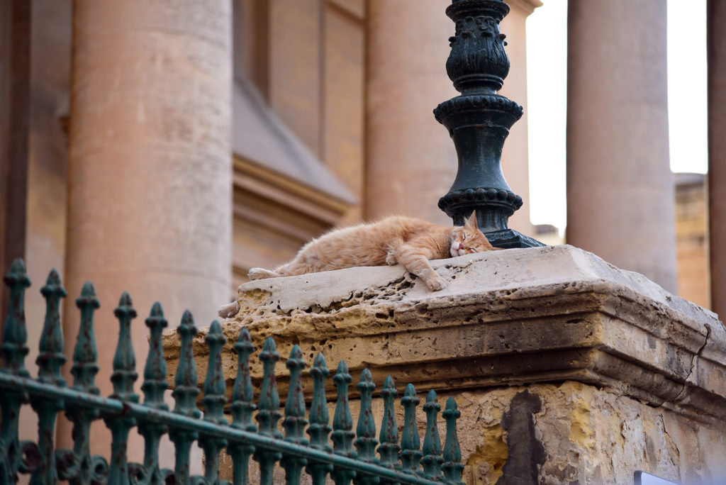 Valletta - kot na ogrodzeniu Prokatedry św Pawła