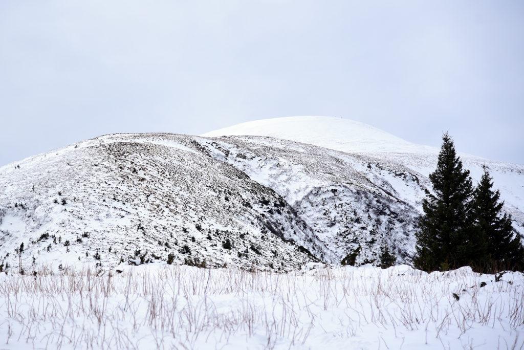 Howerla - szczyt w całości pokryty śniegiem
