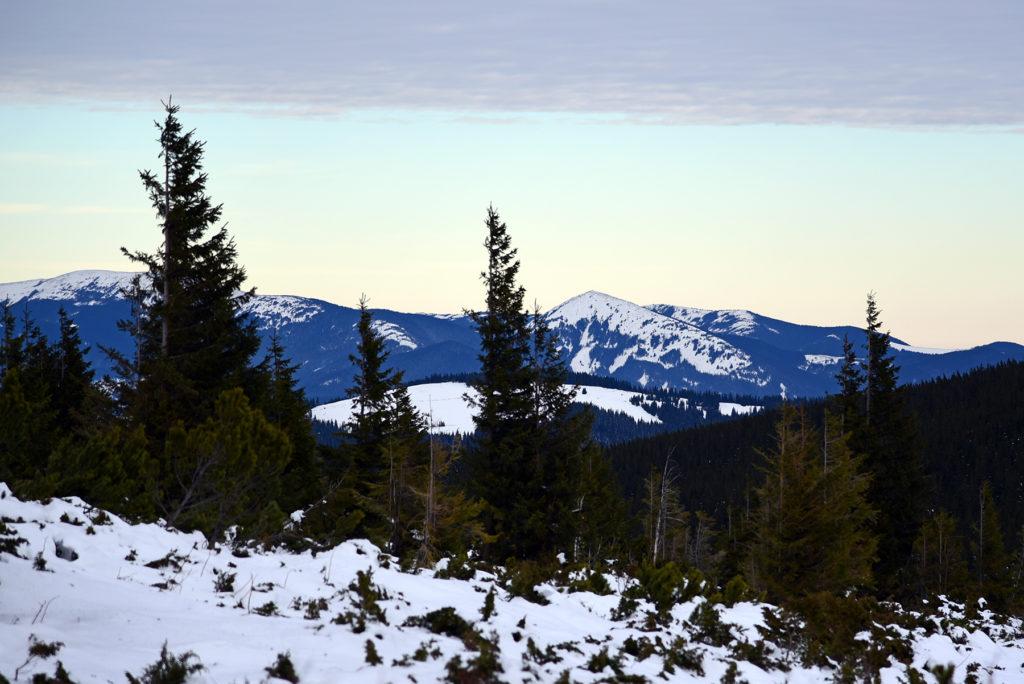 Howerla - widok ponad granicą lasu