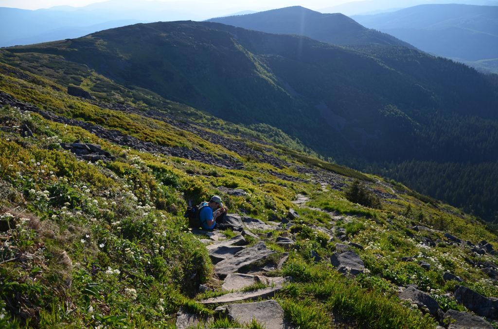 Żółty szlak na Babią Górę w stronę Małej Babiej Góry