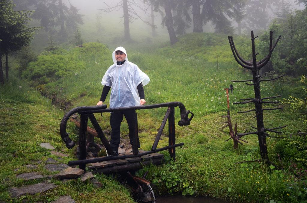 Mostek w lesie na zboczu Turbacza