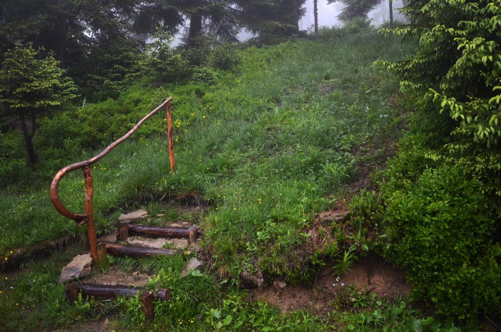 Schody do lasu - poza szlakiem na Turbacz