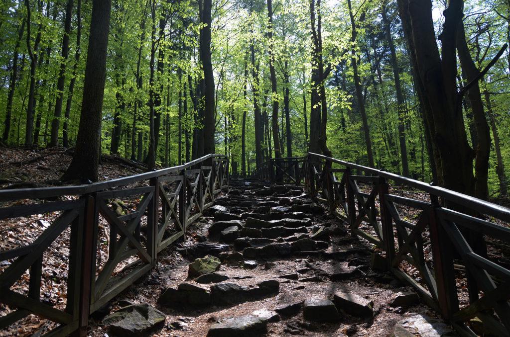 Szlak na Łysicę - barierki przy ścieżce
