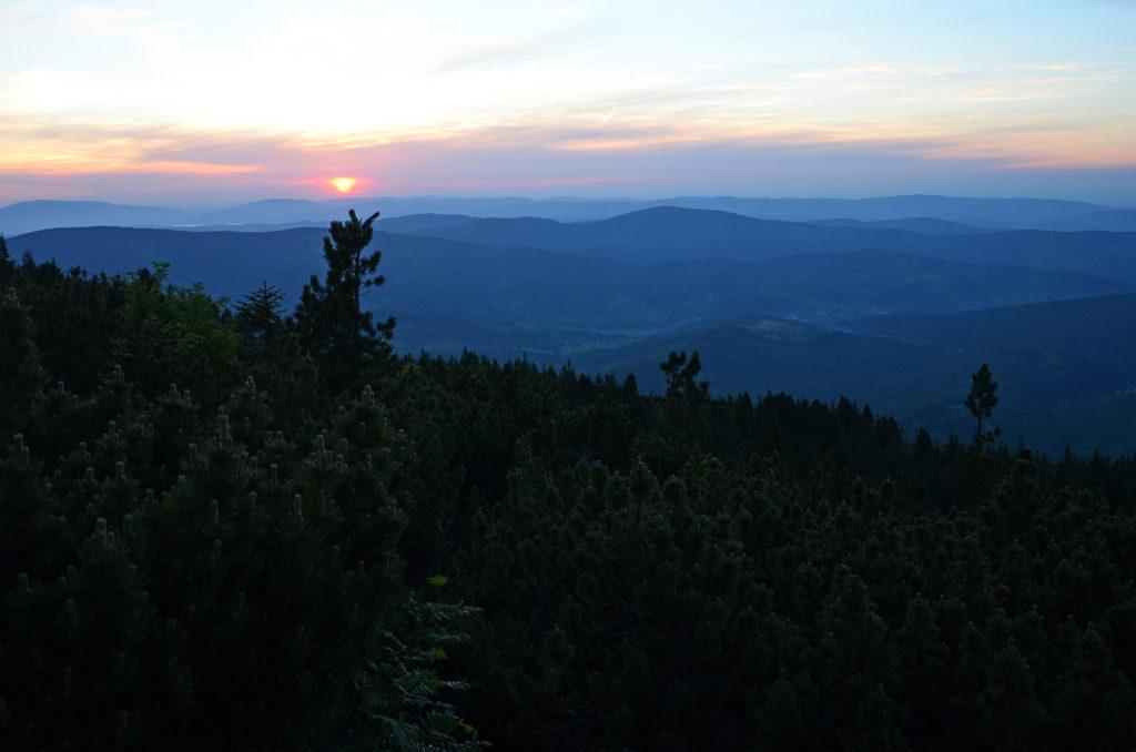 Zachód Słońca nad kosodrzewinami