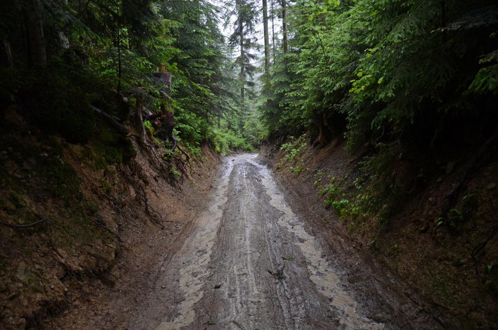 Zielony szlak z Turbacza do Nowego Targu