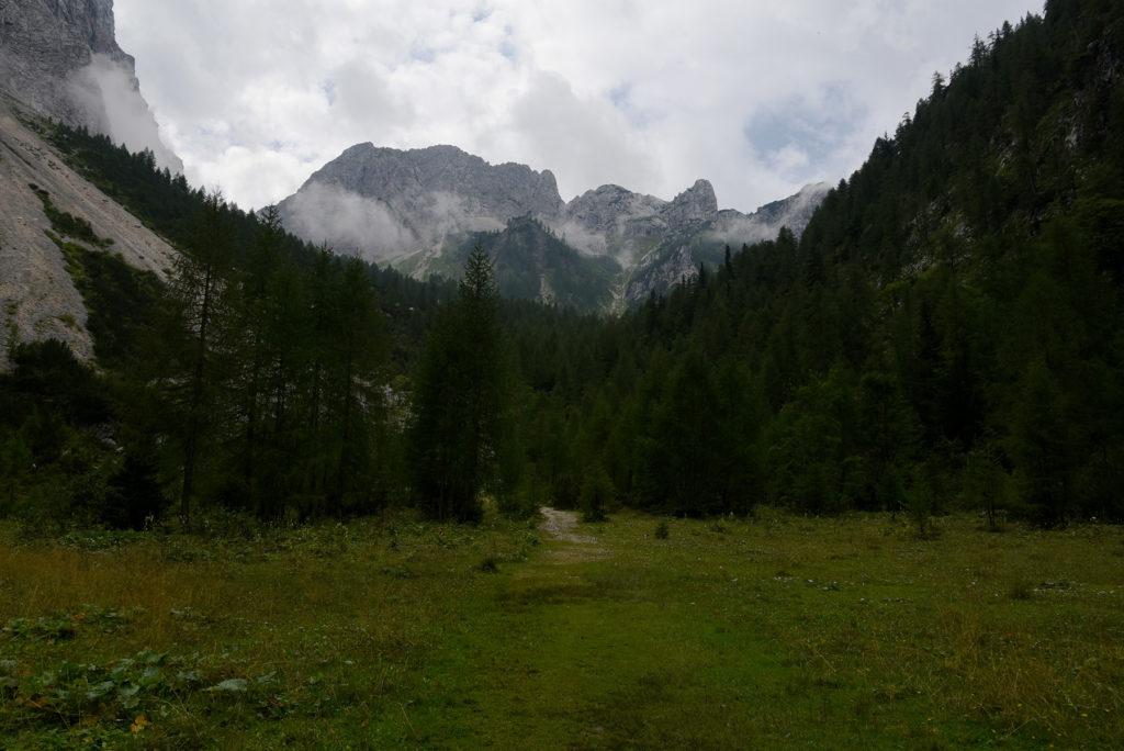 Polana w Dolinie Krma